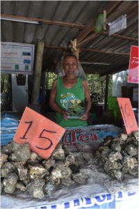 An oyster farmer in Surat Thani shows off his prize for having the highest quality oysters in the region. He told me how changes in the water he didn't understand were causing problems with his oysters. Lack of monitoring in the region and poor education among oyster farmers makes it difficult for them to understand and address ecological problems affecting their industry.