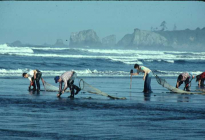razor clams, clam digging, Moclips, long beach, coastal, washington